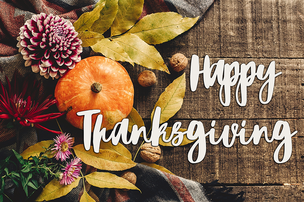 Happy Thanksgiving from Ray Rico Freelance